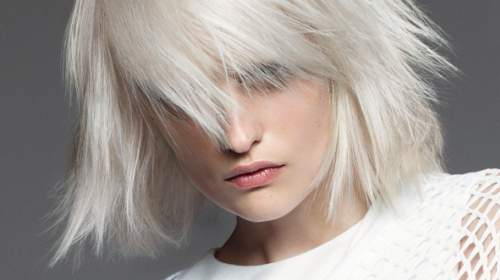 Exclusive Leistungen von Hair Innovation